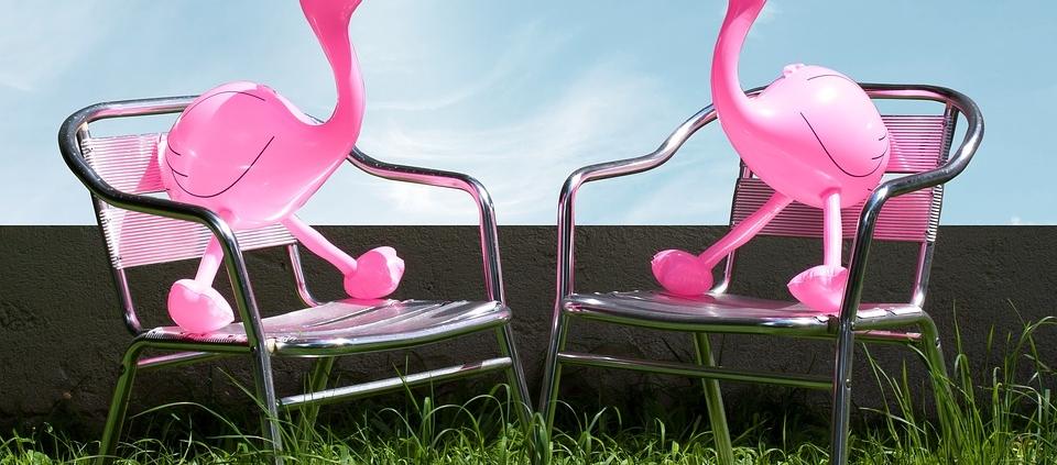 flamingo-1554180_960_720